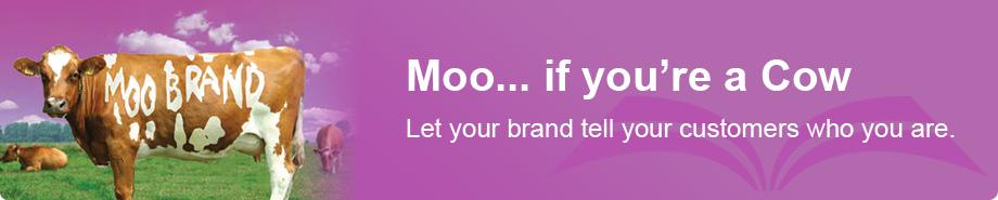 Branding & Re-Branding