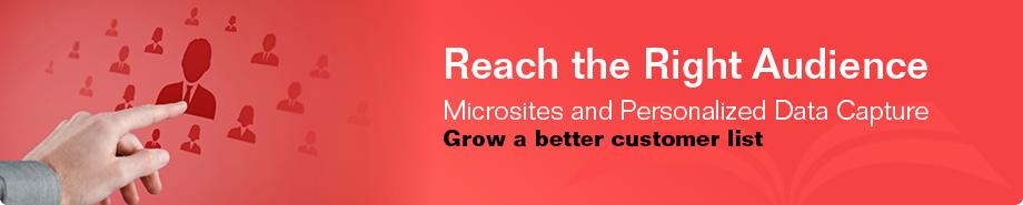 Micro-Sites